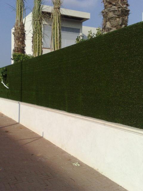 הדבקת דשא על גדר הבית בסביון