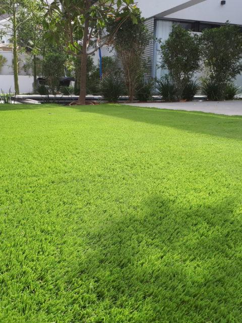 התקנת דשא סינטטי בשרון