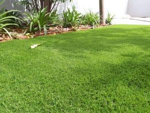 חידוש דשא סינטטי