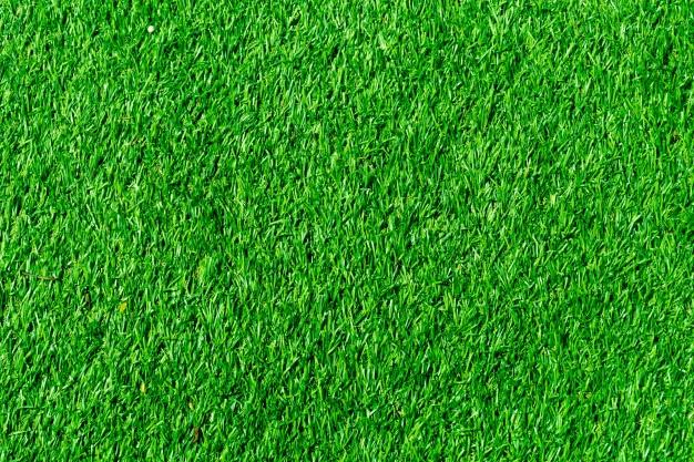 דשא סינטטי לחצר - איך לבחור את הסוג הנכון?