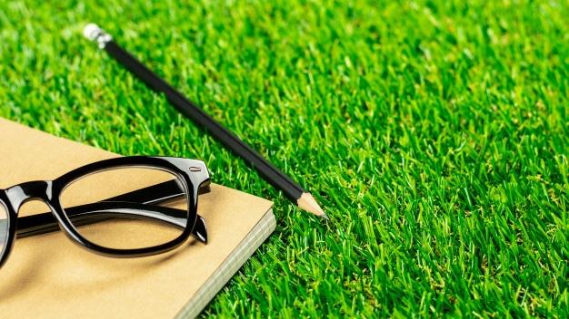דשא סינטטי מול דשא טבעי – לעשות את הבחירה הנכונה עבורכם
