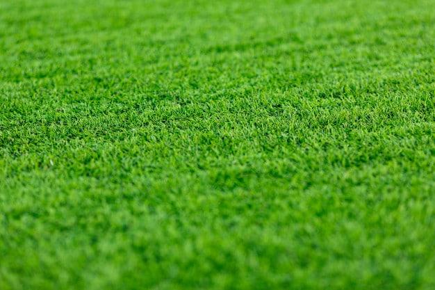 דשא סינטטי תוצרת ישראל – מדוע כל כך כדאי לרכוש דשא שיוצר בארץ?